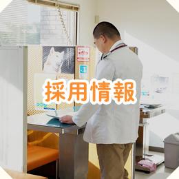 院長・スタッフ紹介|下関市菊川町の動物病院なら …